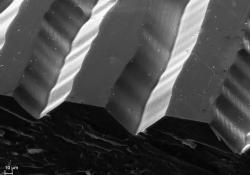 Drážka vinylu pod mikroskopem (zvětšení 340x)