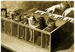 Schrödingerofon