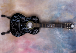 Jedna z vydražených kytar